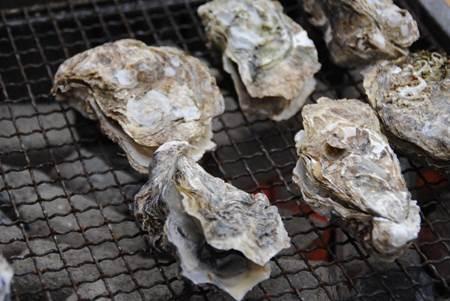 牡蠣にあたるのはノロウイルスが原因?生牡蠣最高♪