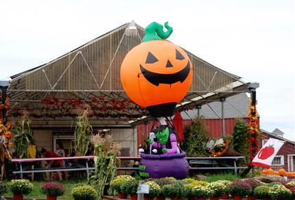ディズニーランドの全身仮装ハロウィンイベント!衣装の規定とは?