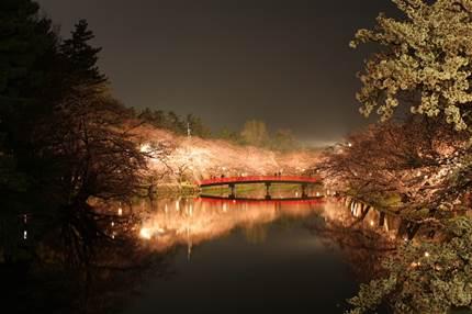 桜の名所No.1!弘前公園のさくら祭り!見頃はいつまで?