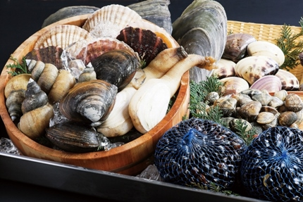 """""""たくさんの新鮮な貝"""