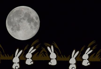 月を眺めるウサギ達