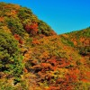 関東の秋!紅葉デートは登山がおすすめ!とっておき5選はココ!