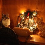 羊毛フェルトで手軽に可愛く♪クリスマスリース飾りの作り方